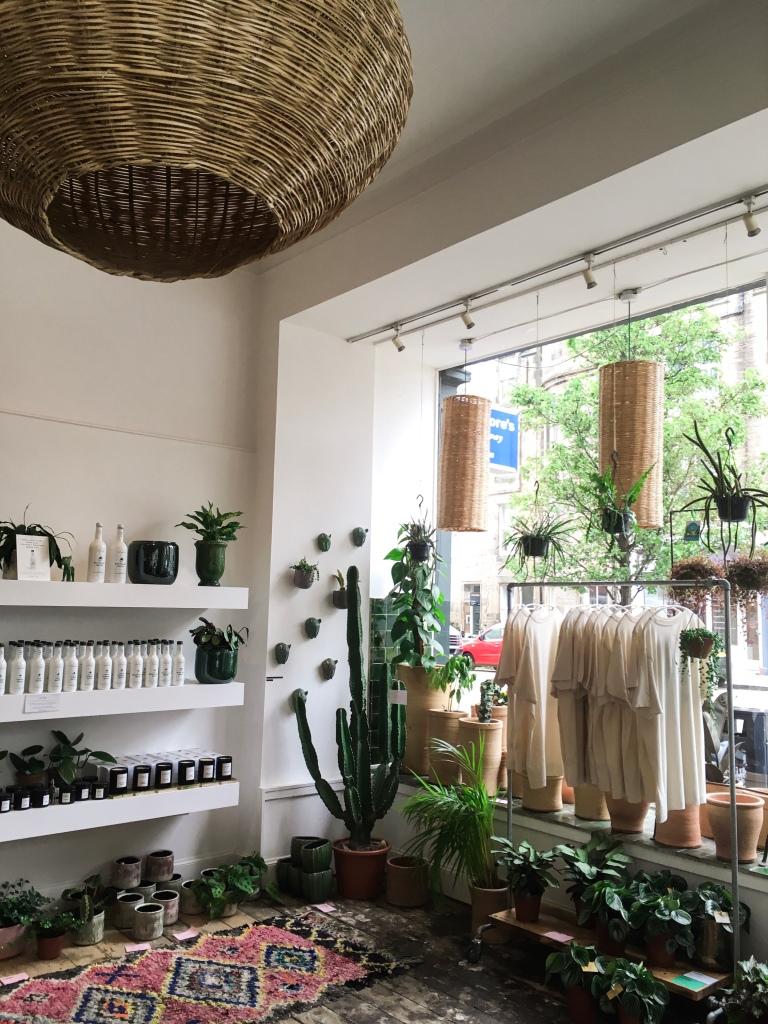My Favourite Places to Plant Shop in Edinburgh: Dahlia