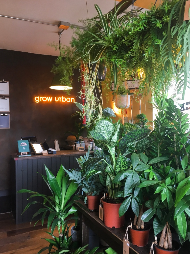 My Favourite Places to Plant Shop in Edinburgh: Grow Urban