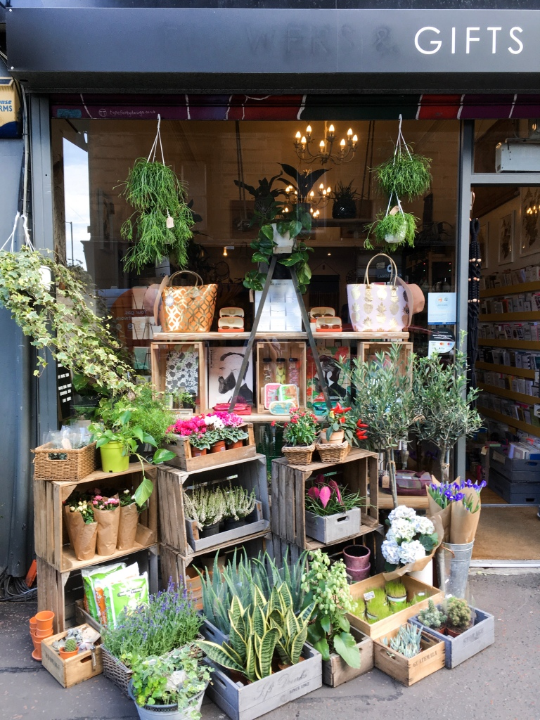My Favourite Places to Plant Shop in Edinburgh: Cloud 9