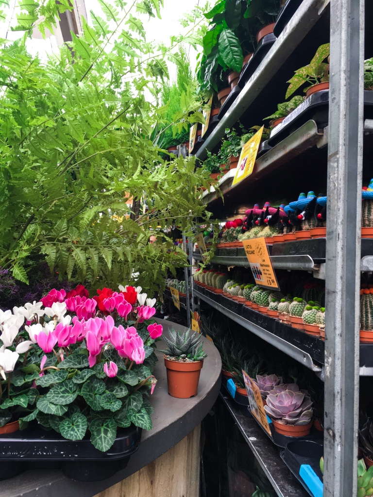 My Favourite Places to Plant Shop in Edinburgh: Plant Sales at the University